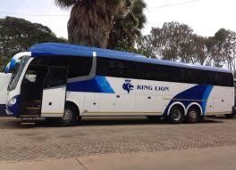 KING LION COACHES